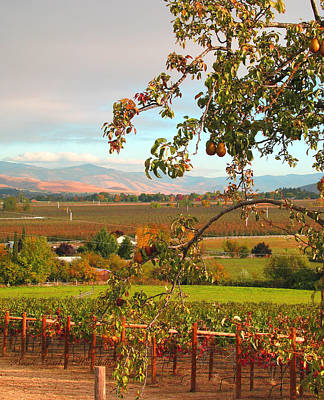 My Favorite Valley View - Autumn In Southern Oregon Poster
