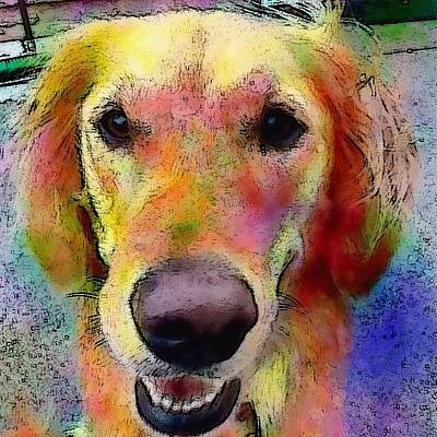 My Friends Dog #portrait #dogportrait Poster by Robin Mead