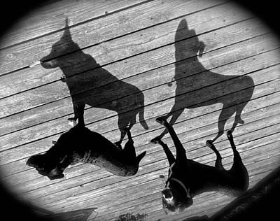 My Shadows Poster by Rita Mueller
