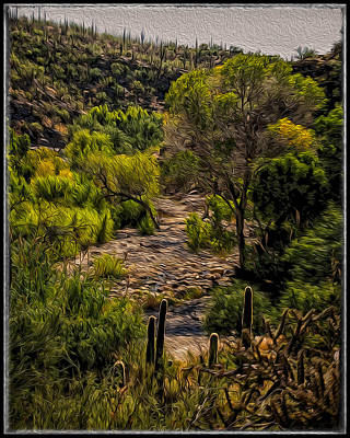 Poster featuring the photograph Mystic Wandering by Mark Myhaver