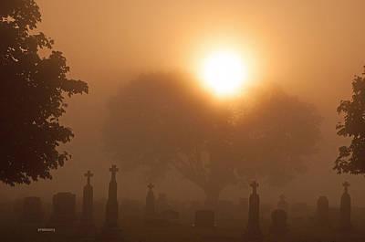 Mystical Fog Poster