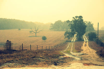 Naked Tree Farm Poster