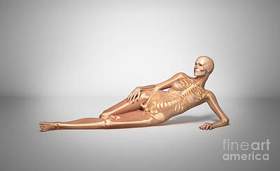 Naked Woman Laying Down With Skeletal Poster by Leonello Calvetti