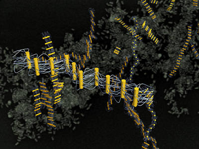 Nanorods For New Nanostructured Poster