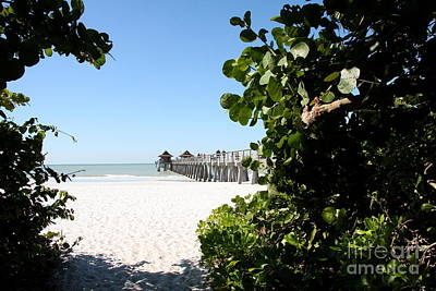 Naples Pier View Poster by Christiane Schulze Art And Photography