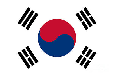 National Flag Of South Korea Authentic  Poster