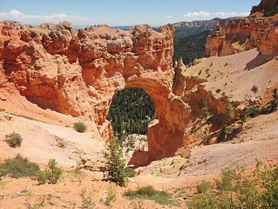 Natural Bridge At Bryce Canyon Poster by Jayne Wilson