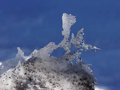 Natural Ice Sculpture Poster by Ernie Echols