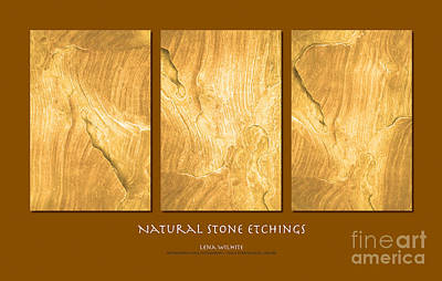 Poster featuring the photograph Natural Stone Etchings by Lena Wilhite