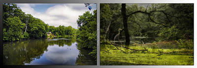 Nature Center 02 Bird Tree Silhouette Merge  Fullersburg Woods 2 Panel Poster by Thomas Woolworth