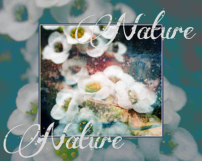 Poster featuring the painting Nature Floral Bouquet by John Fish