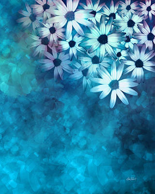 nature - flowers- White Daisies on Blue  Poster