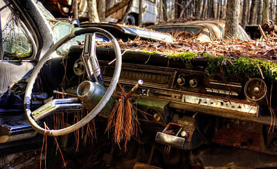 Nature Takes Over A Cadillac Poster