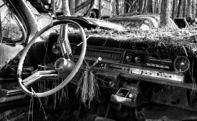 Nature Takes Over A Cadillac In Black And White Poster