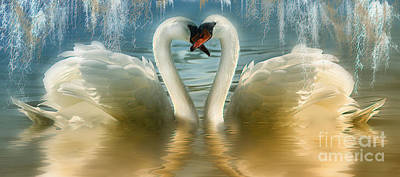 Natures Love Poster