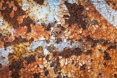 Natures Mosaic Poster