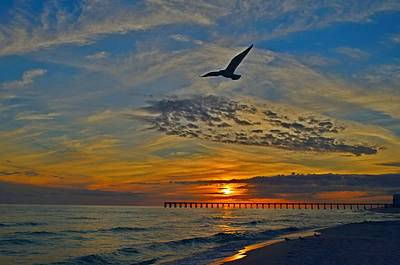 Navarre Beach And Pier Sunset Colors With Gulls And Waves Poster by Jeff at JSJ Photography