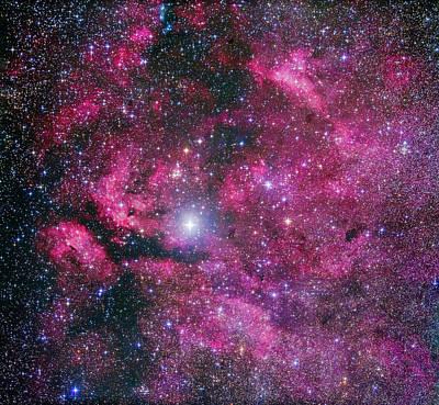Nebulosity Around Gamma Cygni Poster