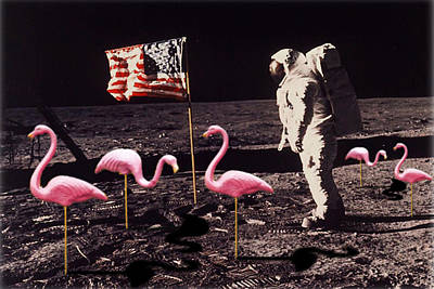 Neil Armstrong And Flamingos On The Moon Poster