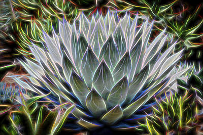 Neon Agave Parryi Poster