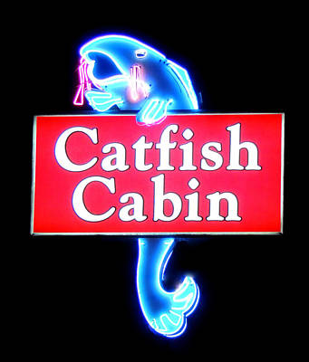 Neon Catfish Cabin  Poster