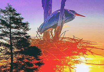 Nesting Heron - Summer Time Poster