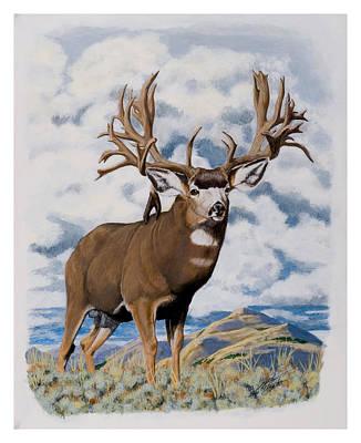 Faria Nevada Nontypical Mule Deer Poster