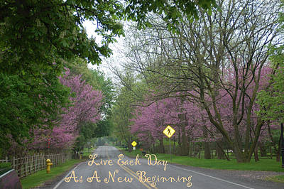 New Beginning Poster by Aimee L Maher Photography and Art Visit ALMGallerydotcom
