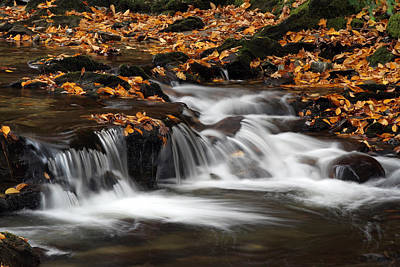 New England Fall Foliage And Waterfall Cascades Poster