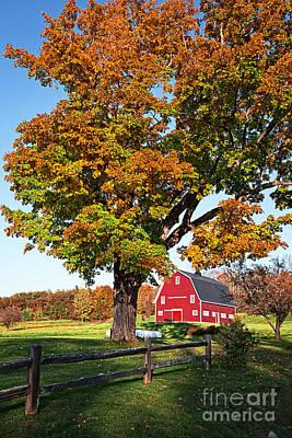 New England Farm Fall Foliage Poster by Edward Fielding