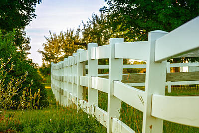 New England Fenceline Poster by Brian Caldwell