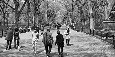 New York City Central Park In Spring Time With People Poster by ELITE IMAGE photography By Chad McDermott