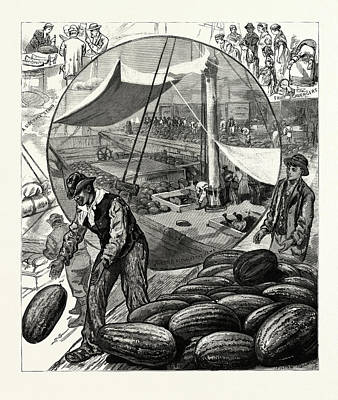 New York Incidents Of The Watermelon Trade In The Metropolis Poster