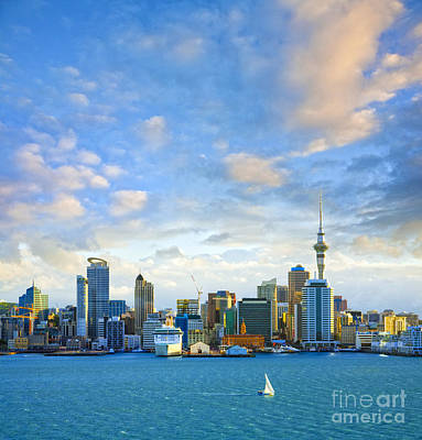 New Zealand Auckland Skyline At Sunset Poster by Colin and Linda McKie