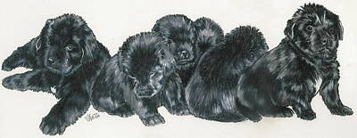 Newfoundland Puppies Poster by Barbara Keith