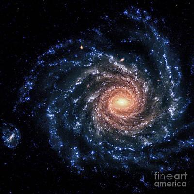 Ngc 1232-spiral Galaxy-optical Poster