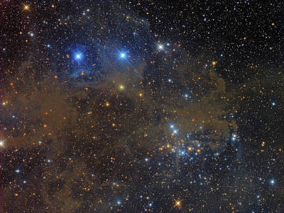 Ngc 1342 Open Cluster In Perseus Poster by Roberto Colombari