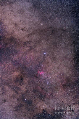 Ngc 6231 Area Oriented Equatorially Poster by Alan Dyer
