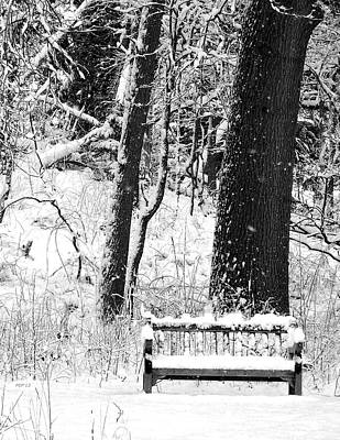 Nichols Arboretum Poster by Phil Perkins