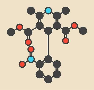 Nifedipine Drug Molecule Poster