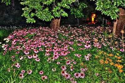 Night Flowers At Washington Square Park Poster