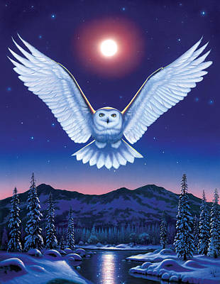 Night Owl Poster by Chris Heitt