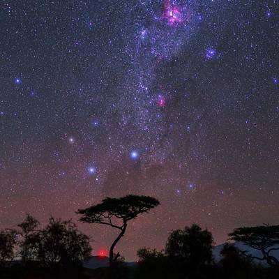 Night Sky Over Kenya Poster