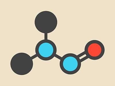 Nitrosodimethylamine Molecule Poster