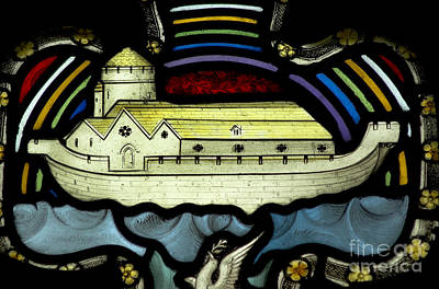 Noahs Ark Poster by Colin Woods