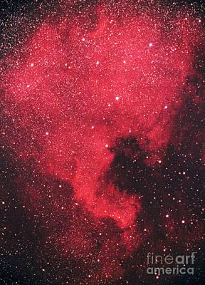 North America Nebula Poster
