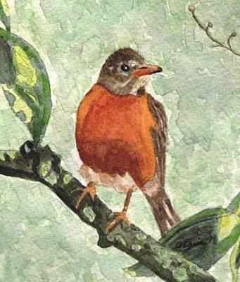 Poster featuring the painting North American Robin by Angela Davies