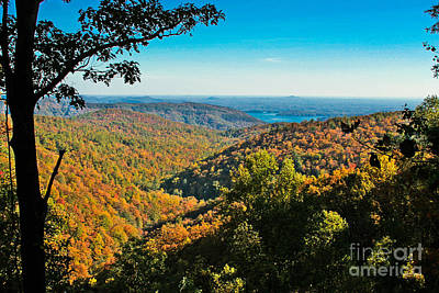 North Carolina Fall Foliage Poster