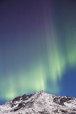 Northern Lights Above The Snow Covered Poster