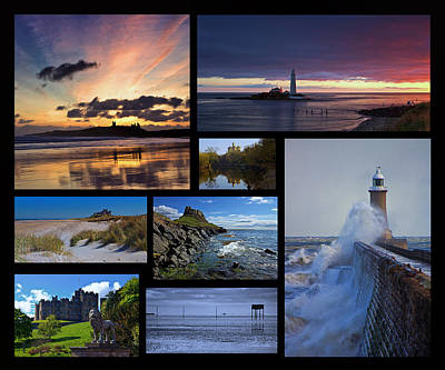Northumbrian Castles And Coast Poster by David Pringle